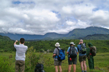Safari to Moshi Arusha Lake Eyasi Ngorongoro Crater Serengeti Natron