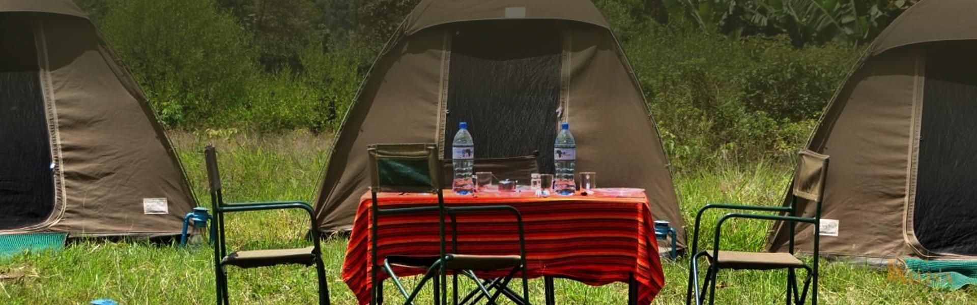 Budget Camping Safari(Serengeti)