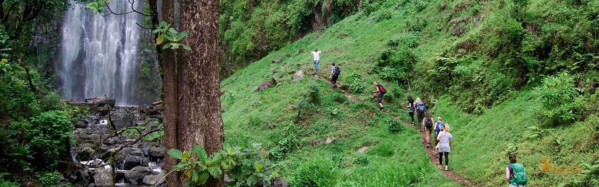 Materuni Waterfall and Coffee Tour